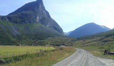 Strada di montagna che porta alla fattoria tradizionale di Herdal, tra le montagne alte e verdi
