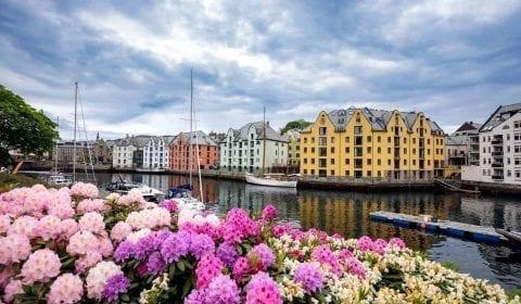 Bâtiments Art Nouveau jaunes, rouges et blancs au canal de Brosund, fleurs roses et blanches au bord de l'eau