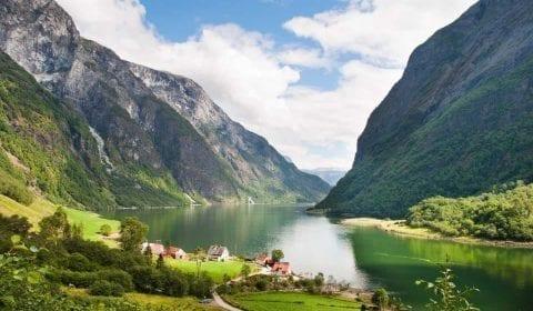 Grüner Fjord umgeben von hohen Bergen, Farmen am Ufer