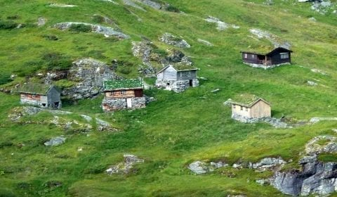 Trehus med gresstak i de grønne fjellene utenfor Geiranger